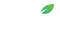 Safe Tree